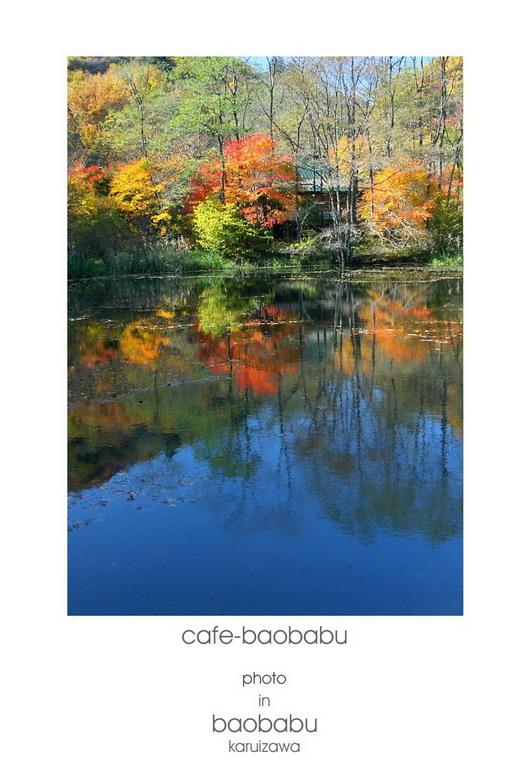 baobabu 00