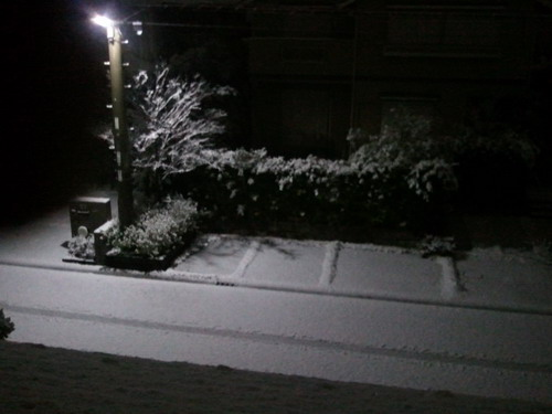 2011-02-14 23.45.00