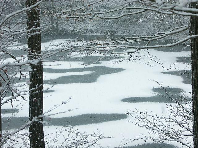 ばおばぶ 凍る万葉池