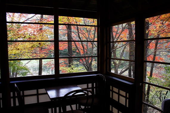 Window Autumn