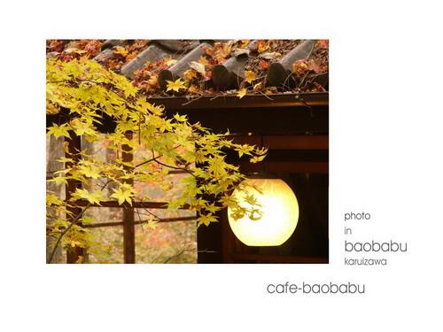 baobabu-18.jpg